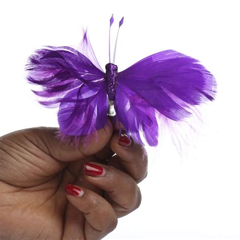 purple crafts for real butterflies for crafts