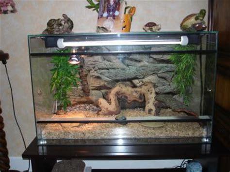 le terrarium mon petit monde de tortue