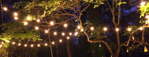 stringing lights stringing lights in trees 28 images stringing outdoor