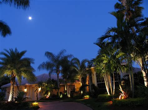 landscape lighting south florida bamboo landscapes landscape lighting south east