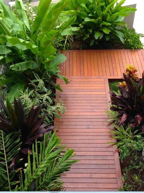 tropical front garden ideas best 25 plants around pool ideas on