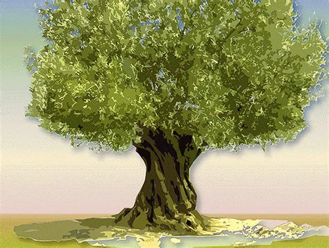 animated tree image tree animation made realistic rhetoric1302 007
