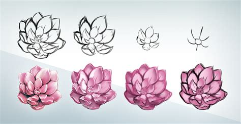 flowers step by step 28 page images drawings of flowers easy step by step