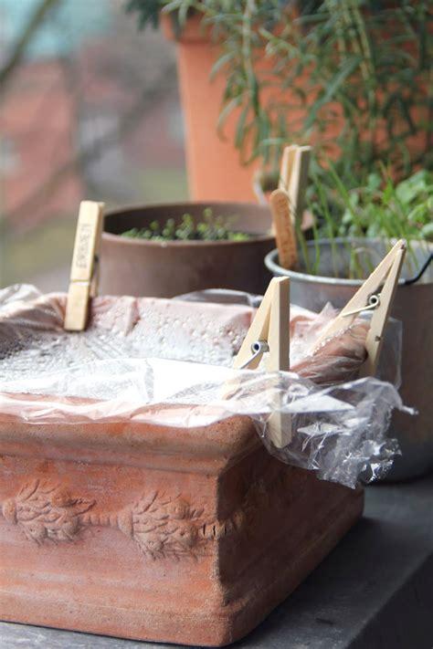 Der Garten Im März by Mein Balkon Salat 3 Selbstversorgung Mit Salat Auf