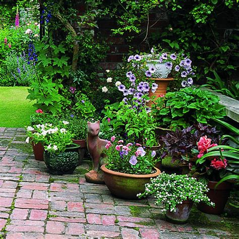 flowers for the garden ideas the basics gardening in containers sunset