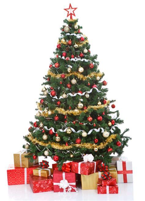 der weihnachtsbaum ein weihnachtsbaum f 252 r chorweiler stadt k 246 ln