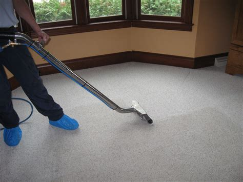 Carpet Ckeaner by The Importance Of Hiring Professional Carpet Cleaning