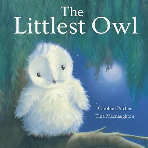 owl picture book the littlest owl scholastic club