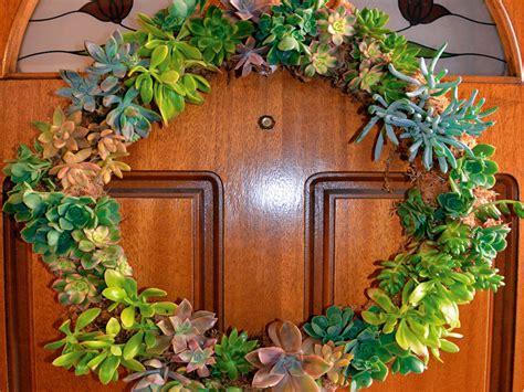 wreath nz make a succulent wreath new zealand handyman