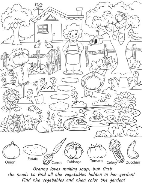 seek and find books pictures free coloring pages of find the objects