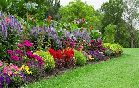 flowers gardens pictures 10 tips for growing a stunning organic flower garden on a