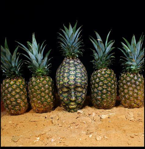 johannes stoetter johannes stoetter painting chion pineapple
