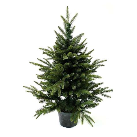 3ft trees 3ft in pot pine pe artificial tree