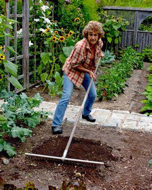 vegetable garden care vegetable garden care martha stewart