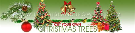 cut your own tree island cut your own tree farms on island