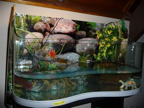 achat aquarium tortue d eau