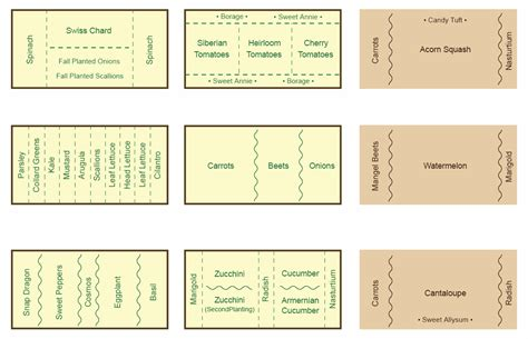 companion gardening layout companion planting chart map and guide companion