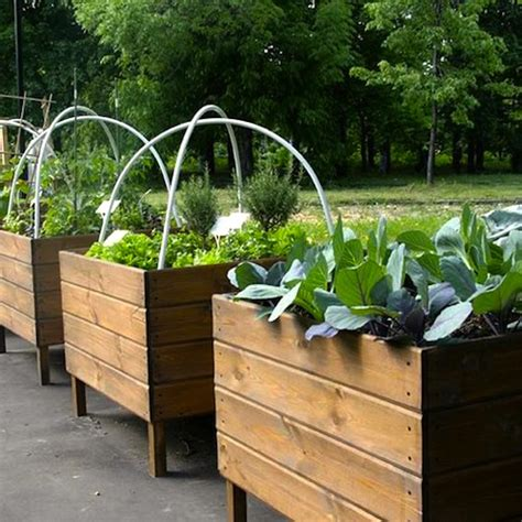 vegetable planters