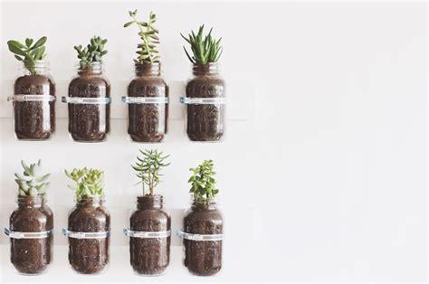 jar herb garden wall 15 phenomenal indoor herb gardens