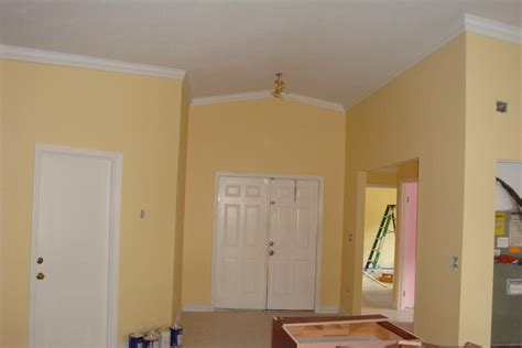 interior paint colors ideas for homes paint color combinations for living room modern and simple