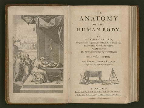 anatomy picture book memory jefferson s library exhibitions