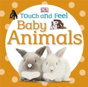 picture books about pets animal books for babies and no time for flash cards