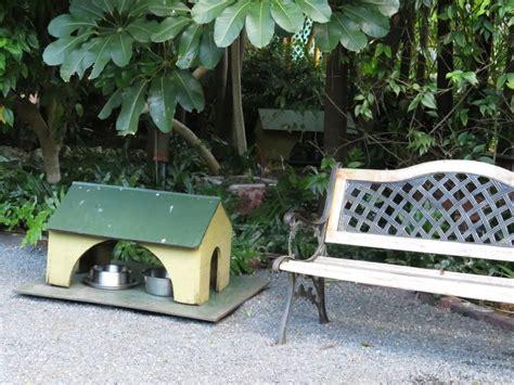 Der Garten Hemingway by Hemmingway Haus Huxlipux De