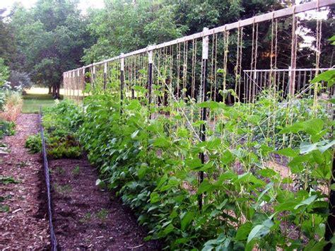 vegetable garden design ideas garden trellis ideas garden ideas and garden design