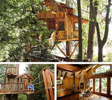 best tree images 10 amazing tree houses plans pictures designs ideas