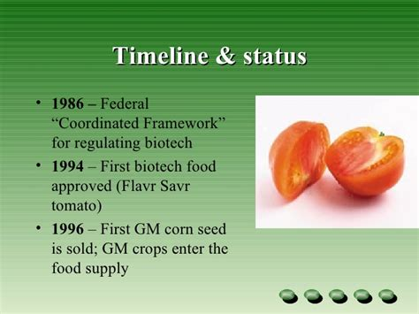 Genetically Modified Definition Crops by Genetic Modified Crops