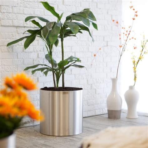 large indoor planter large stainless steel blumentopf planter