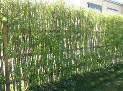 bamboo garden design ideas garden bamboo fencing ideas interior exterior doors