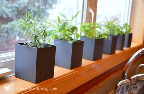 herb garden indoor indoor herb garden tips a guide to successful indoor herb