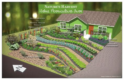 permaculture garden layout the power of permaculture regenerating landscapes and
