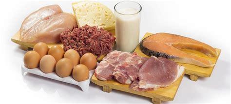 alimentos con alto contenido en proteinas tabla de alimentos ricos en prote 237 nas