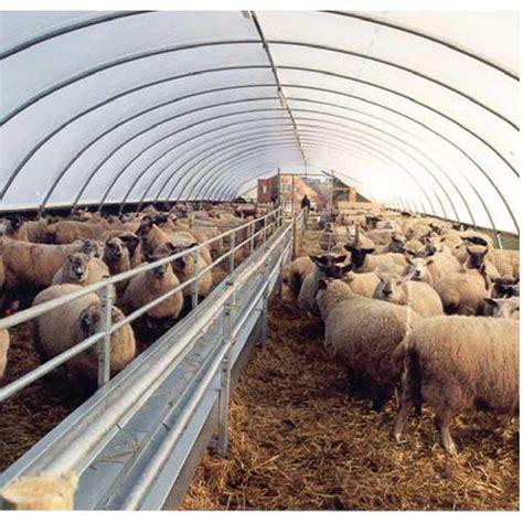Design Your Own House Game sheep and lambing lambing sheep housing 44 ewe