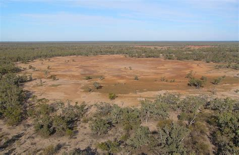 park nsw culgoa national park nsw national parks