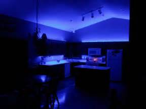 who makes led lights hitlights customer projects rick s ambient led house