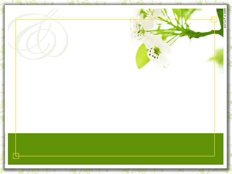 card layouts blank weding card new template