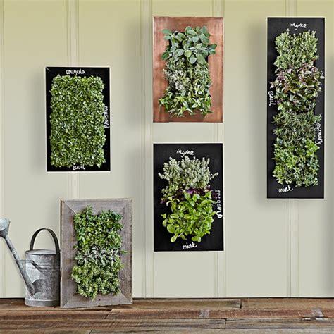 vertical wall planter copper vertical wall planter williams sonoma