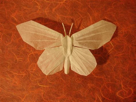 origami artists butterfly jason ku by origami artist galen on deviantart