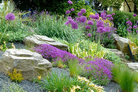 images of rock gardens rock gardens creative landscapes inc