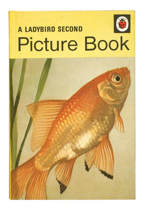 ladybird picture books remember these ladybird books bt