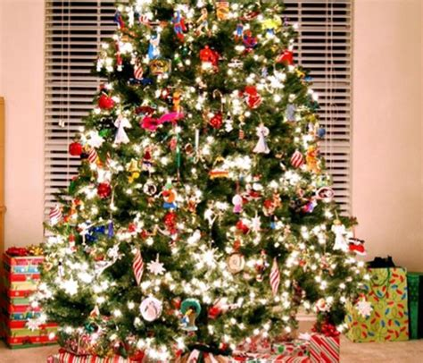how can you keep a real tree keep your nashville home safe from damage this year