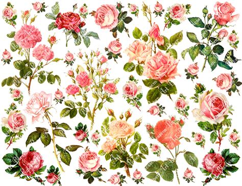 free printable decoupage images 6 best images of vintage flowers decoupage printable