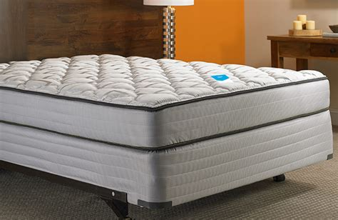 bed foam foam mattress box set shop fairfield inn