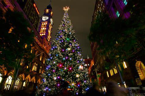 sydney tree lighting sydney tree lighting photo album best