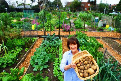 community vegetable garden a plot to grow a community