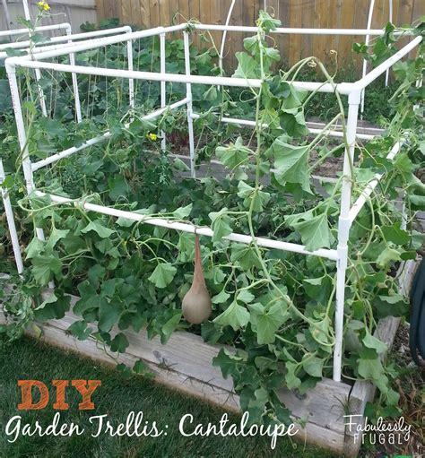 garden trellis plans diy garden trellis part 2