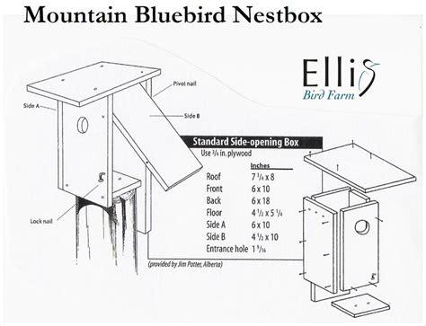 mountain bluebird house plans mountain bluebird house plans nestboxes woodwork blue